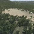 TerraTrees