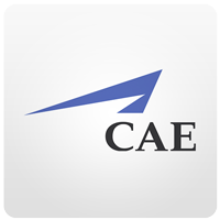 09_CAE